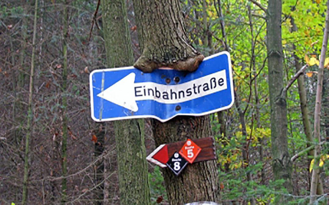 Foto: Einbahnstraßenschild im Baum verwachsen